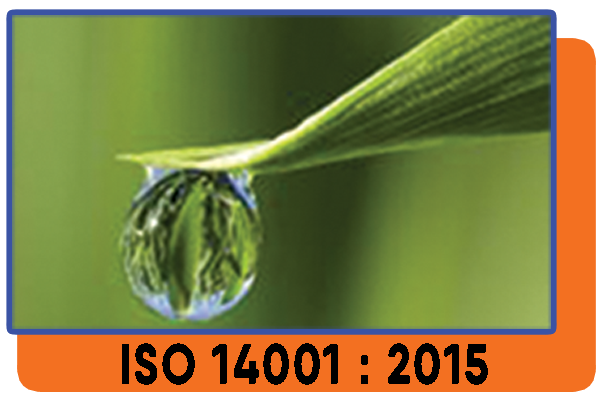 ISO 14000:2015 MPS Certification